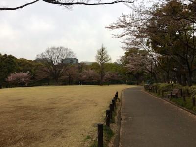 Chiyoda Park Tokyo