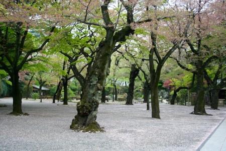 Beautiful Garden Tokyo Japan