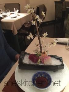 Sashimi in Tokyo with Sakura Tree